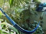 A comfortable hammock in the small but fresh back  yard and patio area.