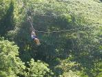 Zip Lining nearby