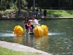 Paddle boats at the local park and train rides