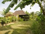 Garden in Bungalow 1 surroundings