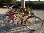 3 Beach Bikes