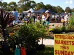 Pottsville Beach markets are 1st and 3rd Sunday of the Month.