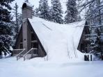 Pinecone-Got Snow?