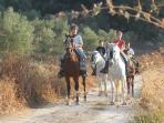 A diez km rutas a caballos por la vía verde de la sierra de Cádiz descuentos por alojarte en la casa