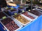 Choose from a wide variety of Greek olives