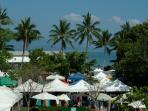 The Port Douglas markets held each Sunday - a short walk and a must do!