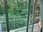View from Master Bedroom w/private balcony.  Enjoy morning coffee listening to the monkeys and birds