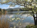 Nearby Beaver Lake in Spring