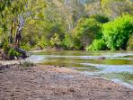 Goulburn River view
