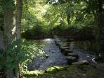 Beautiful woodland walks, The Stepping  Stones at the a Mill Dunsford