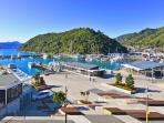 Boats galore to take you out to the Marlborough Sounds