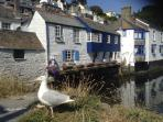 Polperro 5 miles along the coast. A must visit.