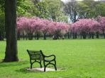 The Meadows - 5 minutes from the apartment - is beautiful in all seasons