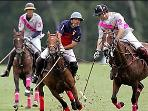 High goal polo during the Queens Cup,at Guards Polo Club in Windsor Great Park,only 10 minutes away