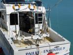 bateau de pêche grand baie à 5 km