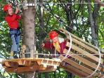 Mount Tamaro adventures like rodeln or climbing trees