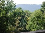 Indian Cove offers views & wooded privacy