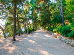 Park Gradac few minute from apartment