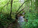 Domaine de Montagenet - Ruisseau des Vergnes