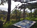 giardino con vista sul  golfo
