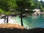 Gortanova Bay, a beach in the shadow of pine trees
