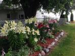 AWSOME FLOWERS