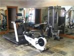 Spa and gym equipment includes stair stepper, stationary bicycle, weight sets