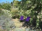 Le rez-de-jardin du gîte