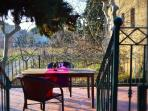 Dine on the terrace- sun or shade whichever you prefer