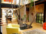 Magical Casa Zen is an ultra-modern Loft Home built between 200 year hacienda stone walls