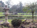 Hilo Japanese Gardens