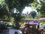 Jardín, zona de comedor exterior
