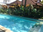Large Swimming Pool just 15 meters from the villa