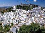 Casares (Andalusian white village) 15 min drive