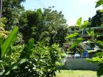 la maison vue du fond du jardin