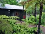 Lush tropical surrounds.