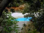 Pool through olive trees