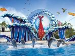 Only 15 minutes drive to SEAWORLD, Orlando!!!