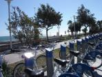 bicycle's rental on the sea front