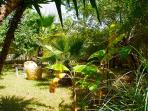 picnic spot under shade