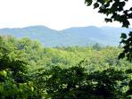 Wooded Seclusion Plus a Mountain View