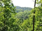 The Beauty of the Great Smoky Mountains Will Surround You