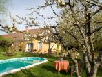 Spring time around the pool with blooming fruit trees!
