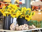 Mirande has a fresh market 2x week (Monday and Saturday)-5 min drive