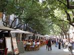 Girona - 40 Km