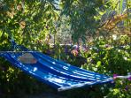 Hammock amongst fragrant garden flowers