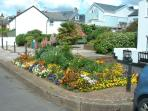 The flowers in Shaldon are always spectacular