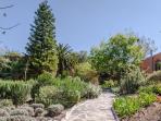 A beautiful desert Gated Garden surrounds Casa Zen
