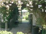 whisteria walkway