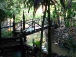 bridge over the creek